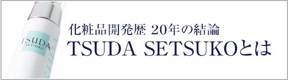 TSUDA SESTUKOとは